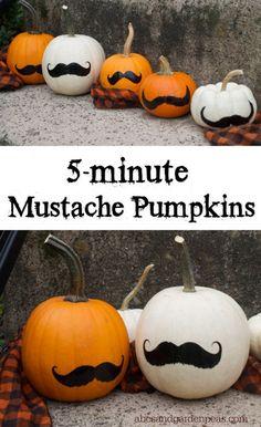 Halloween Craft: Mustache Pumpkins. Quick, cheap and easy!