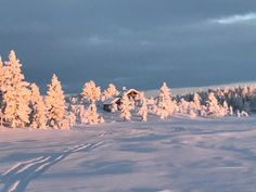 Christmas Time, Mountains, Nature, Travel, Design, Naturaleza, Viajes, Destinations, Bergen