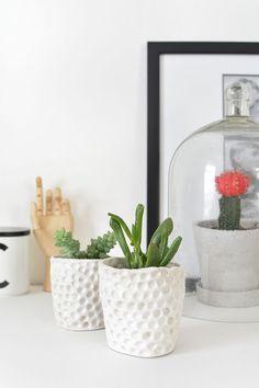 DIY | mini clay succulent planters @burkatron