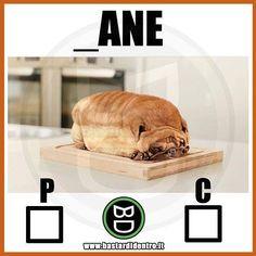Scegli una consonante! Seguici su youtube/bastardidentro #bastardidentro #cane #pane www.bastardidentro.it
