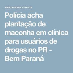 Polícia acha plantação de maconha em clínica para usuários de drogas no PR - Bem Paraná