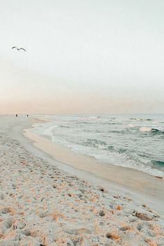 Beach Aesthetic, Nature Aesthetic, Aesthetic Images, Aesthetic Collage, Travel Aesthetic, Aesthetic Backgrounds, Aesthetic Iphone Wallpaper, Aesthetic Photo, Aesthetic Wallpapers