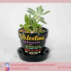 El truco está en volverse fuerte de ❤️ sin perder la ternura del alma  @fridakahlo Siguenos en www.facebook.com/maartmacetas/  #cactus #loveit #macetaspintadas #ixtapa #zihuatanejo #minijardin #hechoconamor #consumelocal #lovecactus  #regalavida #maartmacetas #gardening #desert #plants #plantas #love_natura #green #verde #natura #cactilover #cacti  #succulents #souvenirgift #ideartemexico #fridakahlo #fridakahloart #fridakahloinspired #fridalicious #ManosMx Cactus, Desert Plants, Planter Pots, Succulents, Deserts, Birthday Parties, Diy, Family Business, Terrarium