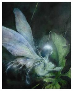 ≍ Nature's Fairy Nymphs ≍ magical elves, sprites, pixies and winged woodland faeries - fae