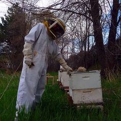Beekeeping... I'm looking into this for the ranch... =)... WAAAAY IN THE BACK.