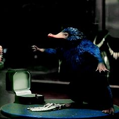 """hardyness: """" Fantastic Beasts and Where to Find Them → Newt Scamander's frown """"The Niffler is standing in a shop window. In order to hide, it is emulating a jewelry stand, little arms outstretched, covered in diamonds.Newt stares at the Niffler in..."""
