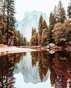 Yosemite National Park  - CA // Photography by Ryan Longnecker