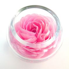 Pink Rose Bowl by geishaboy500, via Flickr