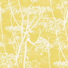 Buy Cole & Son Cow Parsley Linen White-Chartreuse from the extensive range of Cole & Son The Contemporary Collection Fabrics at Select Wallpaper. Original Wallpaper, Print Wallpaper, Feature Wall Bedroom, Cow Parsley, Doors And Floors, Design Repeats, Cole And Son, Icon Collection, Designers Guild