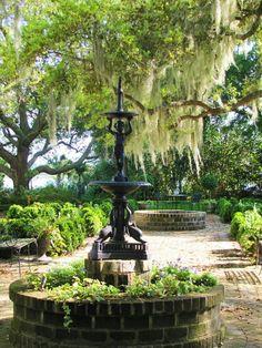 Southern garden