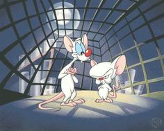 One is a genius, the other's insane...its Pinky, Pinky and the Brain, Brain, Brain...