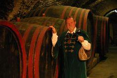 Módos Ernő - A borász 45 éve a magyar borászat színpadán  Mikor 1967-ben a Szekszárdi Állami Gazdaság Pincészetében először közvetlen kapcsolatba kerültem a szekszárdi borkészítés fortélyaival, nem gondoltam, hogy ez a nagyszerű szakma egy életre magához láncol és minden szépségével, kudarcával meghatározója lesz életemnek. Hero's Journey, Minden, Wine Country, Drinks, Drinking, Beverages, Drink, Beverage