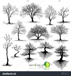 Black tree silhouettes on white background,silhouette of trees,Tree Branch Silhouettes,tree on white background,Vector trees in silhouettes. Set of abstract tr Tree Branch Art, Tree Art, Tree Branches, Tree Tattoo Designs, Tree Designs, Tattoo Ideas, Trendy Tree, Shadow Painting, Painting Art