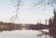 Lacamas Lake Heritage Trail. WA.