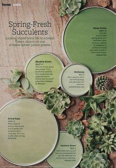 Succulents color palette