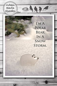 This photo quote is perfect as office art decor and features a lone white zuni fetish polar bear in deep snow. Perhaps you've hear the expression of a blank sheet of paper as a polar bear in a snow storm; well that was the inspiration for this piece, but I also tried to capture some deeper meaning and make it a nice piece of photo art. More at: https://www.etsy.com/shop/WhenEarthSpeaks