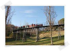 Parc Catalunya de Sabadell Barcelona, Vineyard, Outdoor, Elopements, Miniature, Paths, Train, Activities, Viajes
