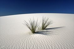 20060925 White Sands National Monument, New Mexico 018 | Flickr ...