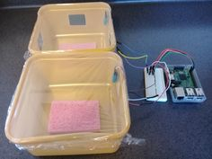 Measuring humidity and temperature with a Raspberry Pi Thing 1, Temperature And Humidity, Digital Technology, Curriculum, Lab, Raspberry, Software, Students