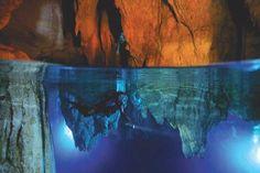 Chandelier Cave // Palau