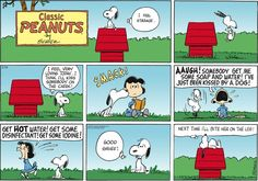 Peanuts Comic Strip, February 19, 2012 on GoComics.com (Hilarious.)