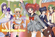 Das sind Ichigo (Rothaarige), Purin (Blonde), Zakuro (Lilahaarige), Minto (Blauhaarige) und Lettuce (Grünhaarige) zusammen sind sie Tokyo Mew Mew