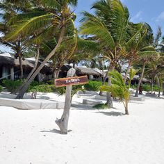 City Guide: Tulum, Mexico | Turntable Kitchen