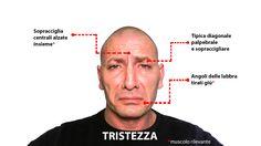 Muscoli rivelatori nell'espressione dell'emozione di tristezza. Guarda altro qui: http://www.stefanoferruggiara.com/training-on-line-emozioni-ed-espressioni/