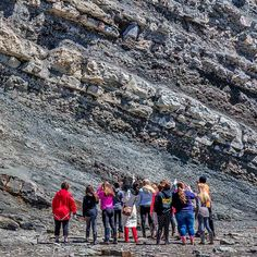 Group looking at fossilized tree stump Joggins Fossil Cliffs, NS, Can. (UNESCO World Heritage Site) Cap Breton, Visit Nova Scotia, Vacation Trips, Vacation Ideas, Le Cap, Sainte Marie, World Heritage Sites, East Coast, Geology