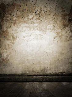 Polypro Vinyl Photography Backdrop & F Fabric Photography, Pet Photography, Christmas Photography Backdrops, Distressed Walls, Brick Texture, Plains Background, Best Paint Colors, Wall Backdrops, Dark Wood Floors