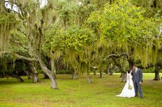 Southern Florida Wedding, Spanish Moss, Bride and Groom Portraits, MaryFieldsPhotography_TX  Photo By Mary Fields Photography