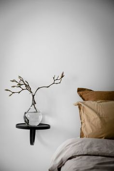 magnolia branches in vase