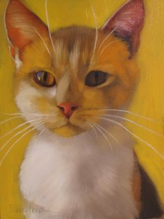 Kirk on Yellow cat feline original oil painting, painting by artist Diane Hoeptner