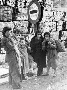 Spain - 1939. - GC - Réfugiés espagnols sur la route de l'exode. - Visit to grab an amazing super hero shirt now on sal