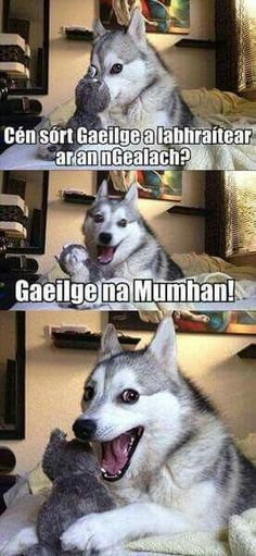 14 Best Jokes From Pun Husky - Jokes - Funny memes - - Why Did Mozart Killed His Chicken? The post 14 Best Jokes From Pun Husky appeared first on Gag Dad.