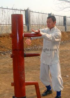 Master Zhang was my instructor in China. He is a world-renowned expert in Qi Gong, Wing Chun, and Shaolin Kung Fu.  http://www.traditional-shaolinkungfu.com/