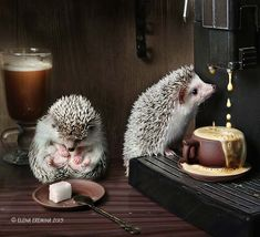 Wake up, dear! Your coffee is ready! by Elena Eremina on 500px