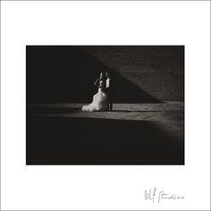 #winnipeg #wedding #photography #weddingdetails #fairmontwedding #ukrainianceremony #serbianwedding #blfstudios