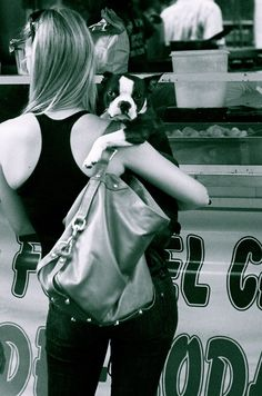 cute boston :) This is how they all want to be held!! --TRUE STORY! Lou always wants to be held like a baby