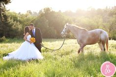 This is my idea of incorporating horses in a wedding...