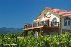 paschal winery talent Oregon