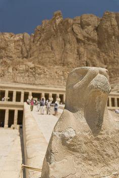 Horus. The Temple of Hatshepsut, Egypt. Amazing perspective