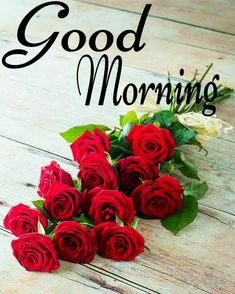 Good Morning Friends Images, Good Morning Flowers Pictures, Good Morning Beautiful Pictures, Good Morning Roses, Cute Good Morning, Good Morning Picture, Good Night Image, Morning Pictures, Good Morning Wallpaper