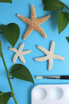 DIY How To Make Faux Starfish