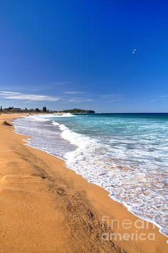 http://kaye-menner.artistwebsites.com/featured/summer-sunshine-at-the-beach-kaye-menner.html