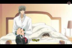 Misaki, such a cutie. XD (Junjou Romantica)