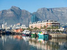 Cape Town is one of the best place for visiting in the vacation so that it will be quite useful for our vacation. Cape Town, The Good Place, Travel Destinations, Surfing, Vacation, Boats, Travel Plan, Pictures, Php