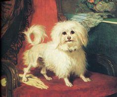 Conradyn Cunaeus (1828-1895)