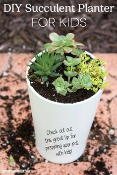 DIY Succulent Planter for Kids | What a great beginning gardening project for kids! This includes a great tip for prepping your pot and making sure your plant thrives . . . even if you don't have a green thumb.