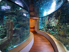 private home aquarium